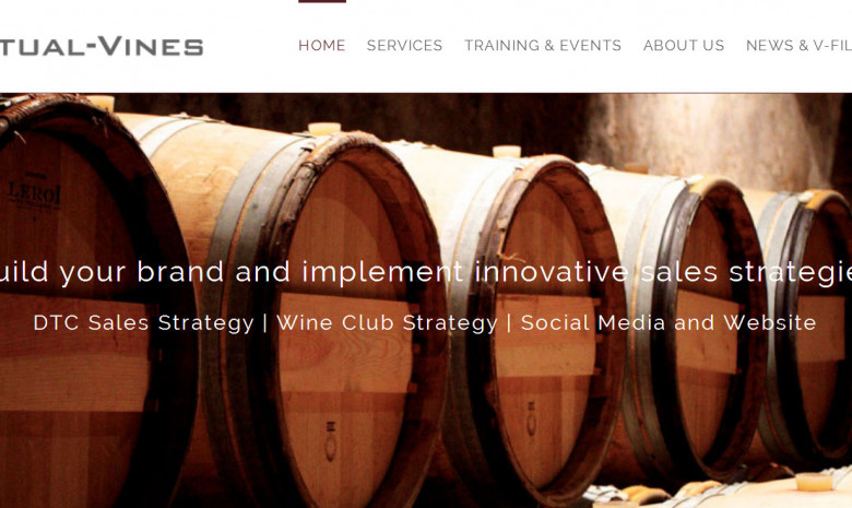 10% OFF Virtual Vines Online DTC Sales Courses
