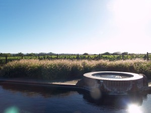 DeLoach - Pool-and-Vineyard-View